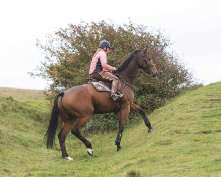 Lacking Riding Motivation? These Three Ideas Will Help