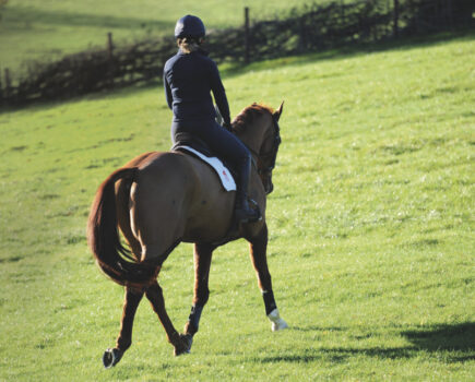 Louise Bell's Effective 30-minute Session to Work on Your Horse's Paces