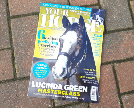 Inside the March Issue of Your Horse Magazine