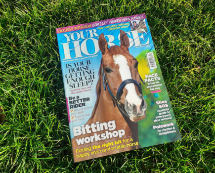 Inside the Spring Issue of Your Horse Magazine