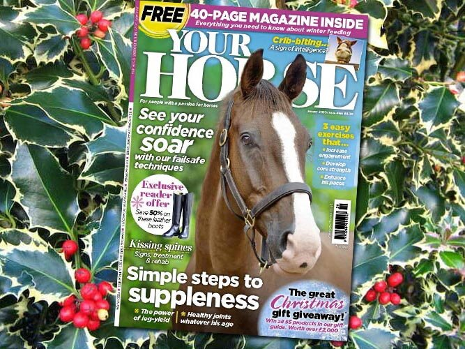 Inside the January Issue of Your Horse Magazine
