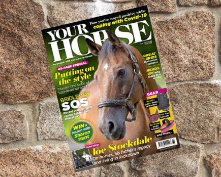Inside the June Issue of Your Horse Magazine