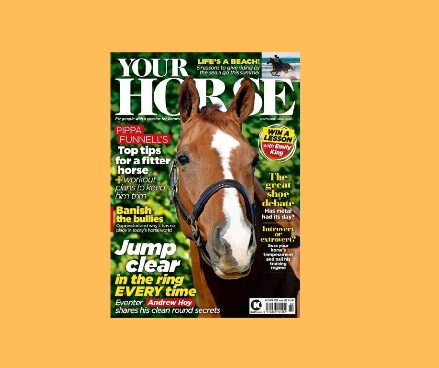 Inside the October Issue of Your Horse Magazine