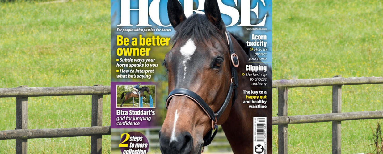 October issue on sale now!