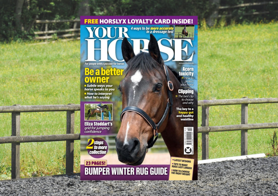 Inside the October issue of Your Horse – featuring our Winter Rug Guide