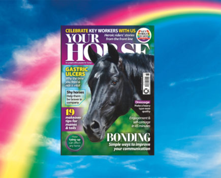 Key Worker Special: Inside the April Issue of Your Horse
