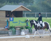 Five tips from a dressage judge to help you feel more confident in the arena