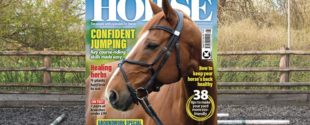 August issue on sale now!