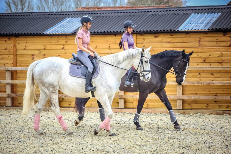 In the market for a new pair of everyday breeches that won't break the bank? Your Horse tests seven pairs