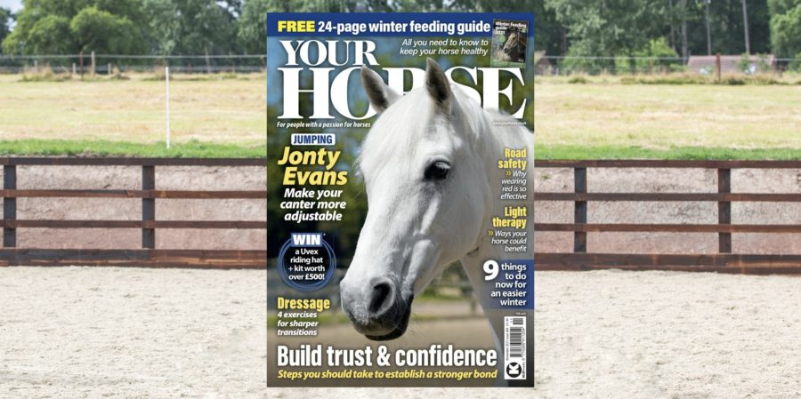 Inside the November issue of Your Horse – featuring our Winter Feeding Guide