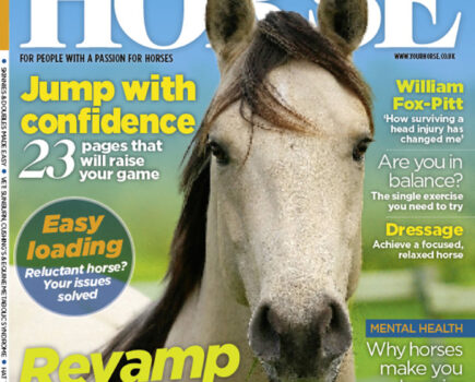 Inside the August Issue of Your Horse Magazine