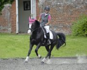 How to ride more accurate circles on the flat and earn better marks for them in a dressage test