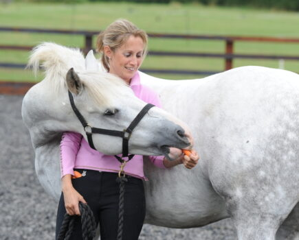 Two Easy Ways to Supple Your Horse Without Getting in the Saddle