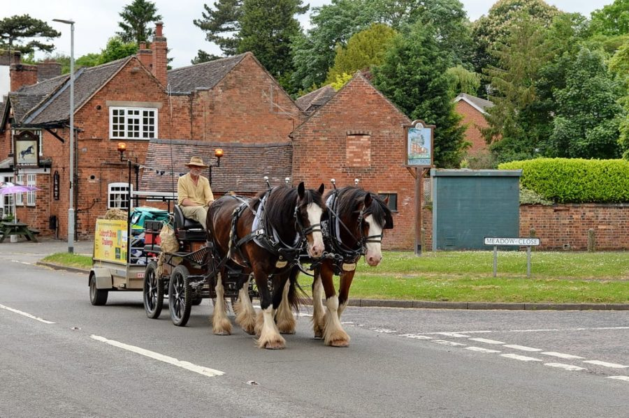 'Emotional journey': man and two Shires overcome lameness and injury to pull off 650-mile carriage ride and raise nearly £50,000