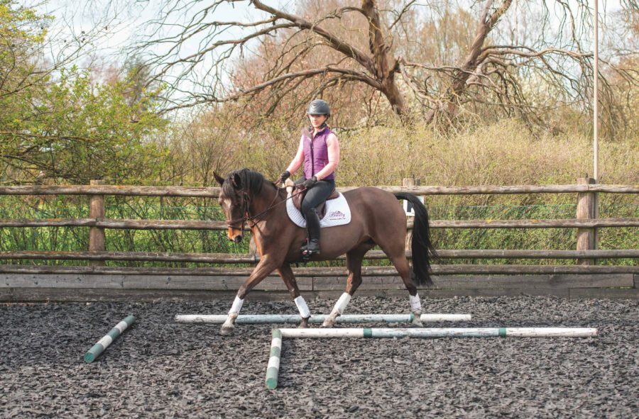 Four exercises to stop your horse falling on the forehand