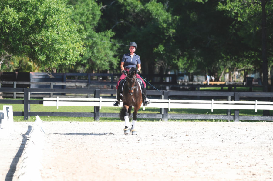 Signs you're causing your horse to be crooked and how to fix it