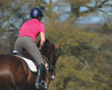 Secrets to success: how to set horsey goals and why every rider should this summer