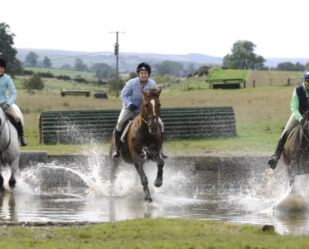 Your Horse is seeking a freelance content producer to join its team