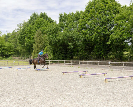 Ros Canter's Grid to Slow a Hasty Jumper