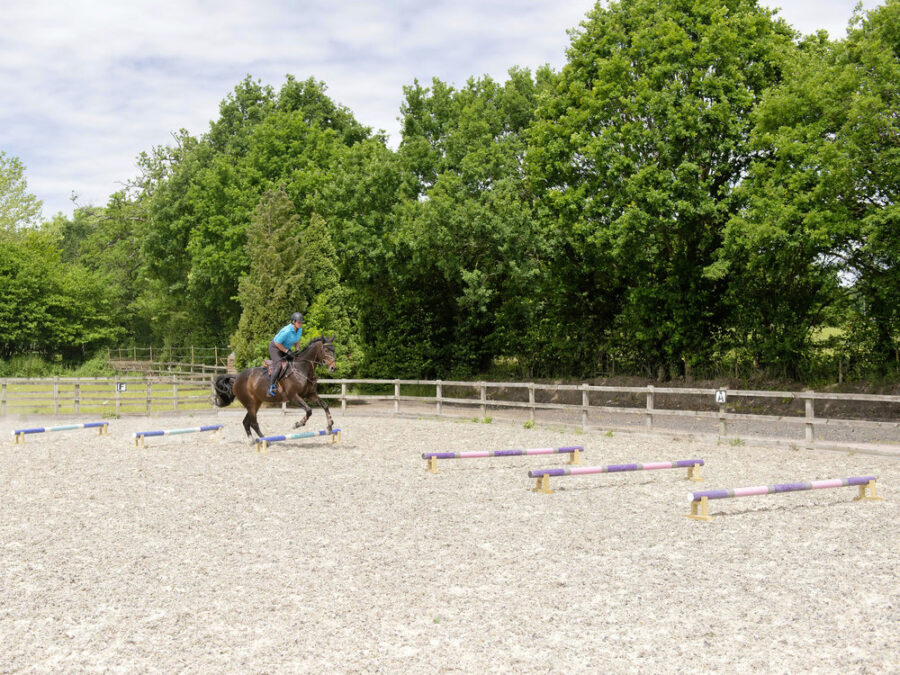 World champion Ros Canter's grid exercise to slow a keen or strong horse when you're jumping