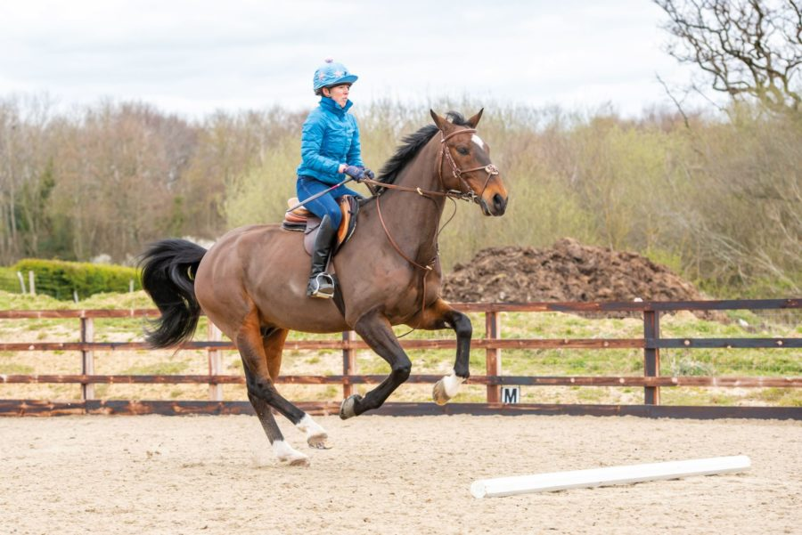 Strong horse? How to work with him rather than against him over fences
