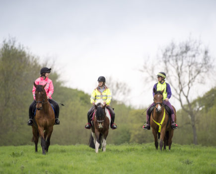 'Good luck and sit tight': new royal patron announced as horse relay kicks off