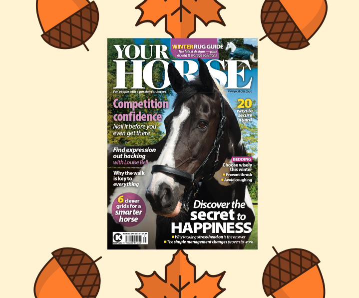 Inside the December Issue of Your Horse Magazine