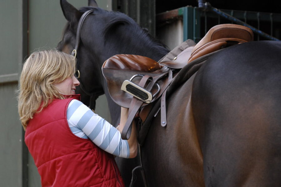 Things to consider about your choice of girth and saddle pad during a saddle fitting