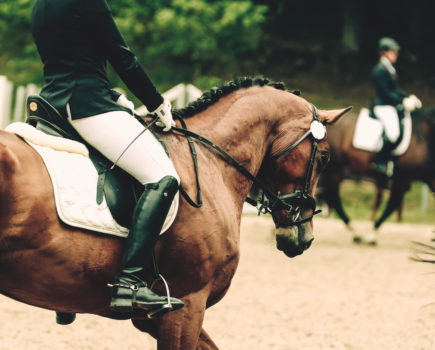 Carl Hester Answers: Helping Horses Who Are Tricky to Ride in Company