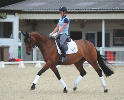 Improve your horse's suppleness, submission and balance in 30 minutes