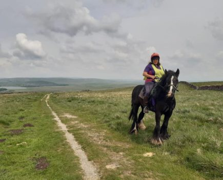 'I was afraid': rider injured in hacking fall when dog attacked her horse bravely gets back on board