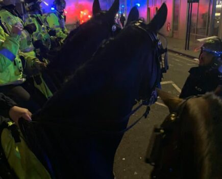 'They Were Amazing': Mounted Officers Praise Horses Policing Violent Protests