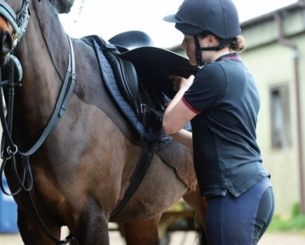 Looking for a new girth? Your Horse puts seven girths to the test