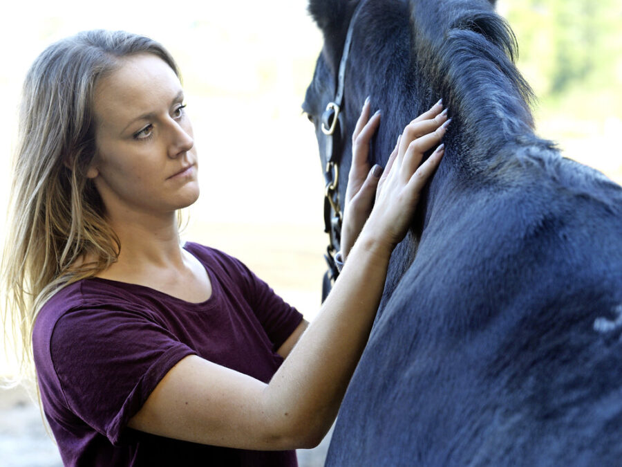 What's your horse's score? How to body condition score