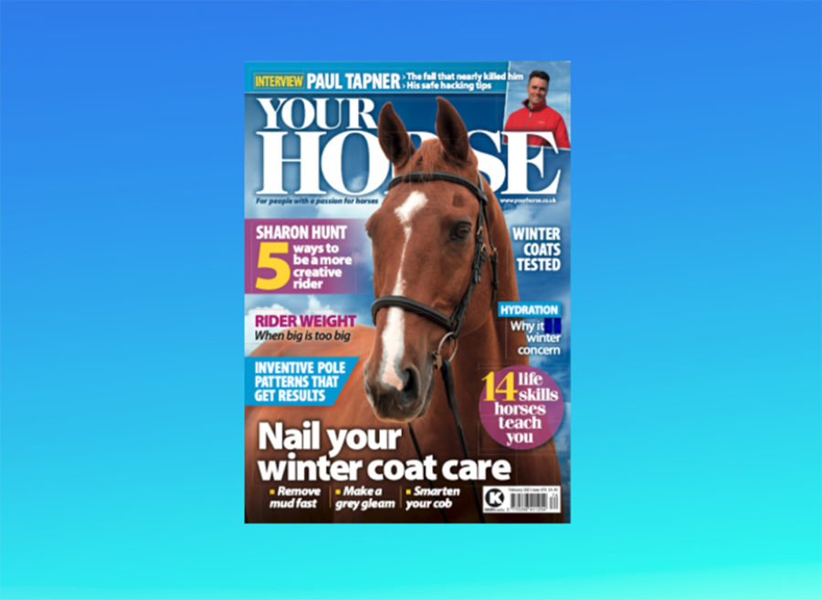 Inside the February Issue of Your Horse