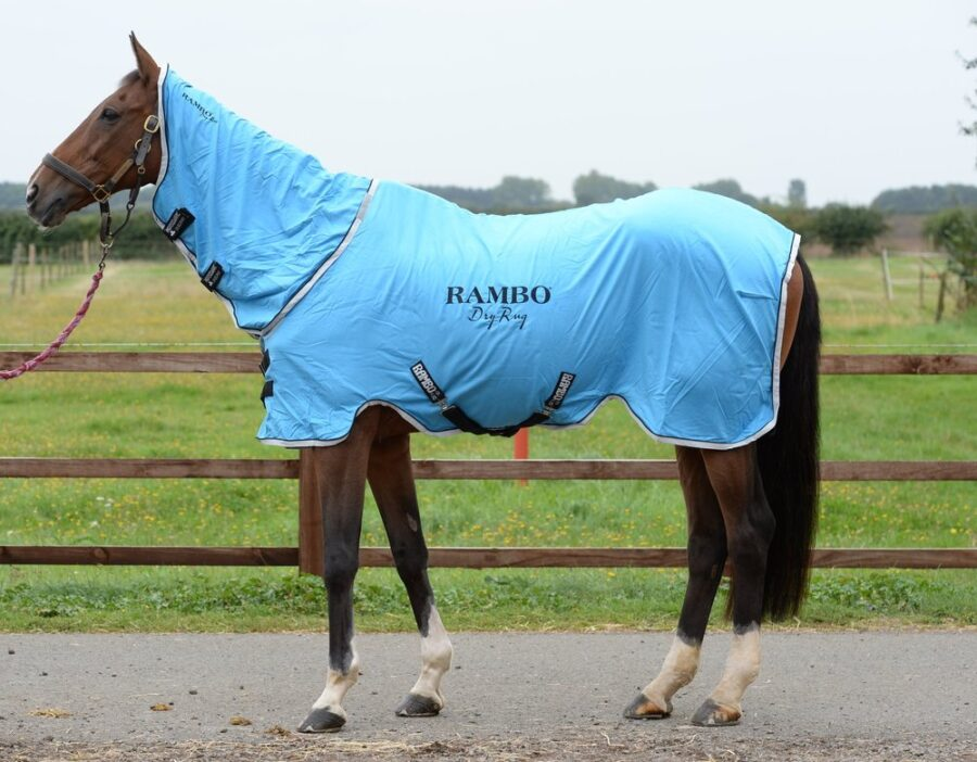 Your Horse Reviews the Rambo Supreme Dry Rug