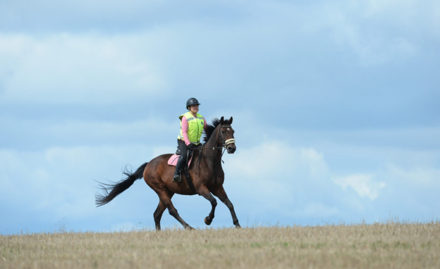How to keep your body comfortable when riding long distances in the saddle