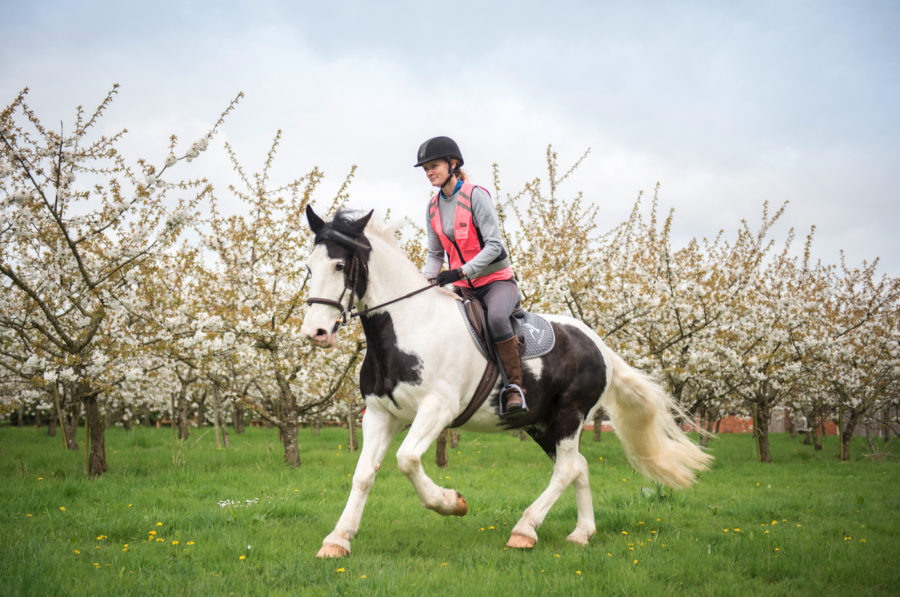 Six ways to keep your horse's back strong and comfortable while hacking