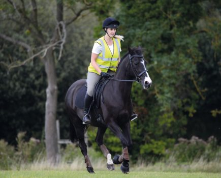 Headshaking: seasonal changes, triggers when riding and the lowdown on PENS treatment