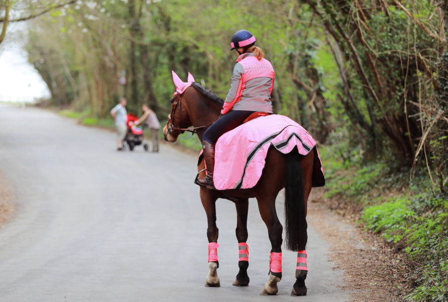 Jason Webb's 10 tips for dealing with a spooky horse out hacking