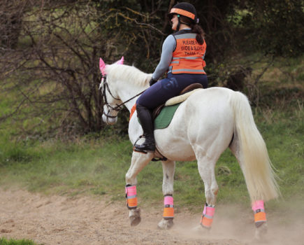 How to build your horse's confidence to enjoy hacking out alone
