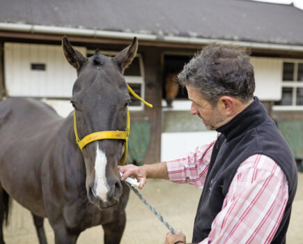 Does the Weather Affect Worming?