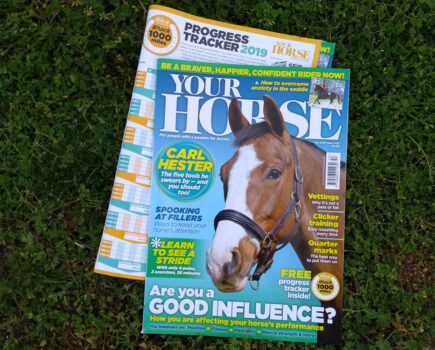 Inside the July Issue of Your Horse Magazine