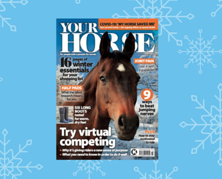 Inside the January Issue of Your Horse