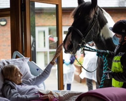 Terminally ill woman is reunited with horse at hospice to say emotional goodbye