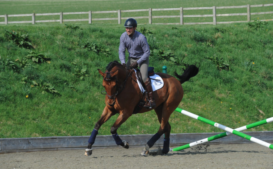 Jay Halim's go-to warm-up routine to get a horse ready to jump a clear round