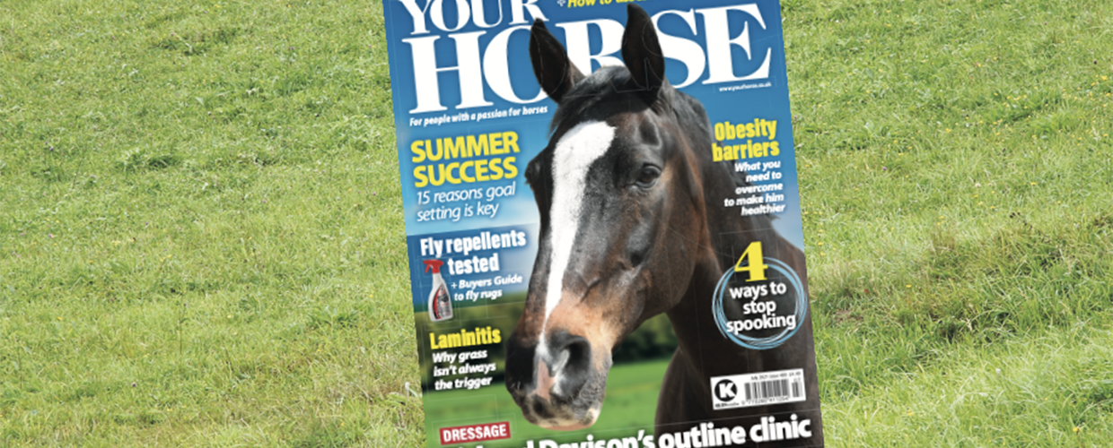 July issue on sale now!