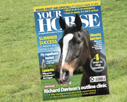 Inside the July issue of Your Horse: rider first aid & fly control special
