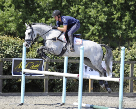 Gridwork to Improve Your Horse's Jumping Technique