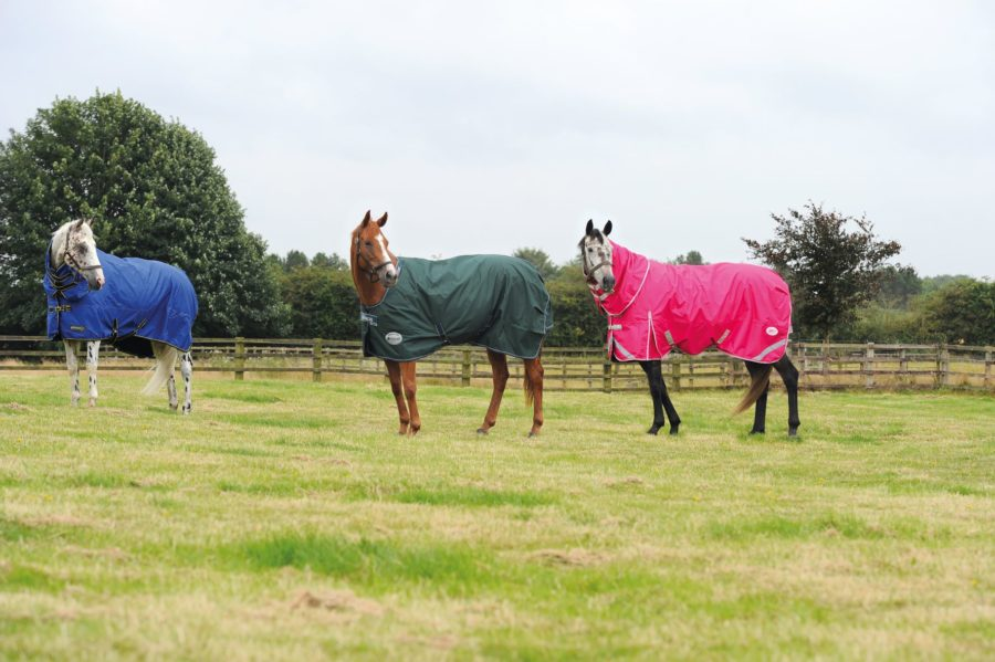 9 lightweight turnout rugs to get your horse ready for autumn